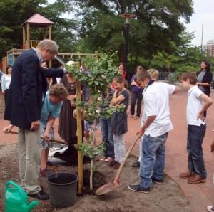 Die Schüler pflanzen gemeinsam einen Baum